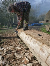 Nicks trims up the sides to remove the unwanted sapwood.